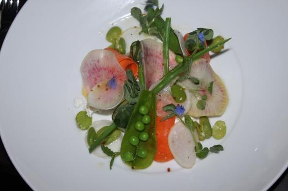 beautiful spring salad
